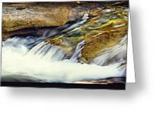Sierra Snow Melt Greeting Card