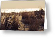 Sierra Sunrise Greeting Card