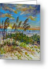 Siesta Beach Sunset Dunes Greeting Card