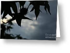 Sihouette Greeting Card