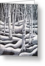 Silent Aspens Greeting Card