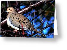 Silent Dove Sm  Greeting Card