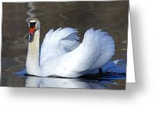 Silent Gracefulness Greeting Card