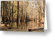 Silent Reflections Greeting Card