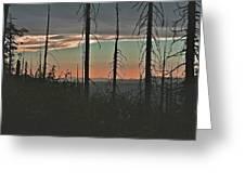 Silhouette @ Yosemite Greeting Card