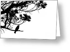 Silhouette Of Singing Common Blackbird In A Tree Greeting Card by Stephan Pietzko