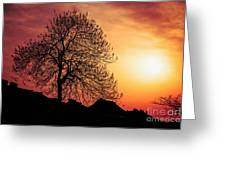 Silhouette Of Tree Greeting Card