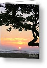 Silhouette Sunrise Greeting Card