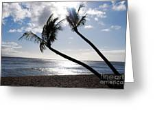 Silhouetted Palm Trees On Maui Beach Greeting Card