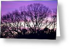 Silhouettes Against Pink Skies Greeting Card