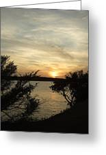 Silhouettes Of Sunset Greeting Card