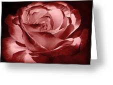 Silk  Greeting Card by Athala Carole Bruckner