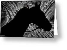 Silouette Of A Stallion Greeting Card