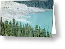 1m3531-silt Entering Peyto Lake Greeting Card
