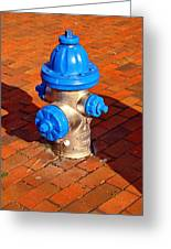 Silver And Blue Hydrant Greeting Card
