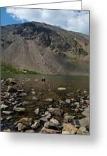 Silver Dollar Lake Colorado Greeting Card