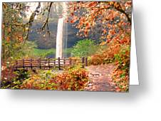Silver Falls State Park Greeting Card