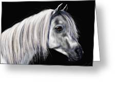 Grey Arabian Mare Painting Greeting Card