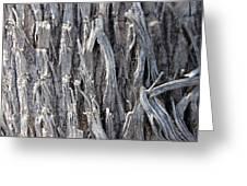 Silver Heavy Metal  Greeting Card