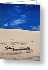 Silver Lake Dune With Dead Tree Branch And Cirrus Clouds Greeting Card