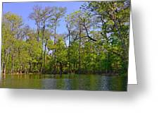 Silver River Florida Greeting Card