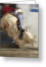 Silver State Stampede 2014 Bull Rider Greeting Card