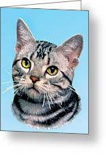 Silver Tabby Kitten Original Painting For Sale Greeting Card