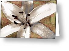 Silvery Asiatic Lily Greeting Card