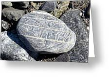 Beautifully Patterned Rock On The Beach In Alaska Greeting Card