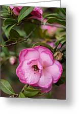 Simple Flower Greeting Card