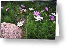 Simple Flowers 11460 Greeting Card
