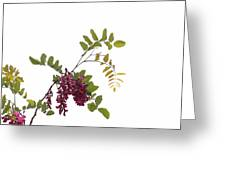 Simple Joy Greeting Card