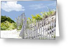 Simplified View Of Coastal Dune Greeting Card