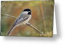 Simply Chickadee II Greeting Card