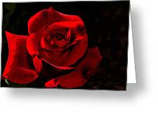 Simply Red Rose Greeting Card