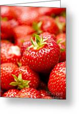 Simply Strawberries Greeting Card