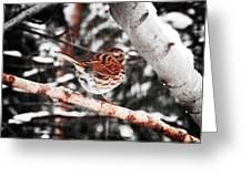 Singing In The Snowfall Greeting Card