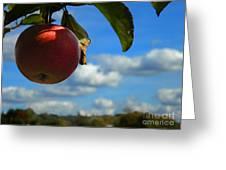 Single Apple Greeting Card