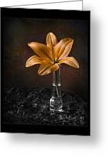 Single Asiatic Lily In Vase Greeting Card
