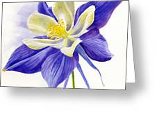 Single Blue Columbine Greeting Card by Sharon Freeman