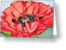 Single Oriential Poppy Greeting Card