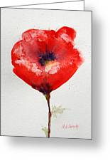Single Red Anemone Greeting Card