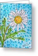 Single Summer Daisy Greeting Card