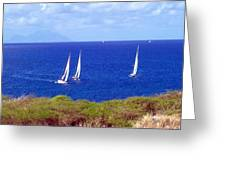 Sint Maarten Regatta Greeting Card