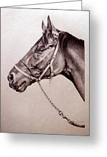 Sir Alfred 2 Greeting Card by Patricia Howitt