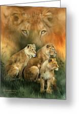 Sisterhood Of The Lions Greeting Card