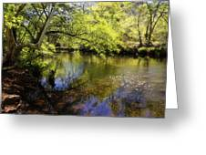 Sitting By The Creek  Greeting Card