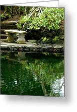 Sitting By The Pond Greeting Card