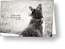 Sitting Cat Greeting Card
