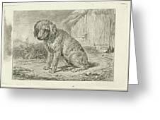 Sitting Dog In A Barn, Johannes Mock Greeting Card